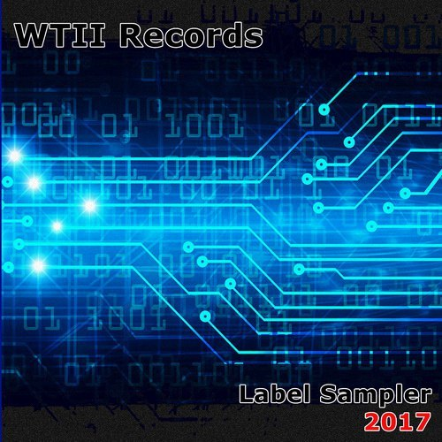Various Artists - WTII Records Label Sampler 2017 (2017)